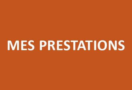 o_fauteuils_colomiers_tapissiere_sur_siege_bridge_mes_prestations